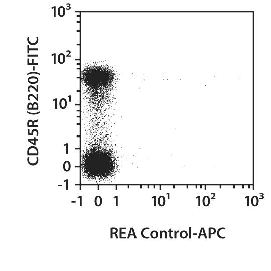 CD19 Antibody, anti-mouse, REAfinity™