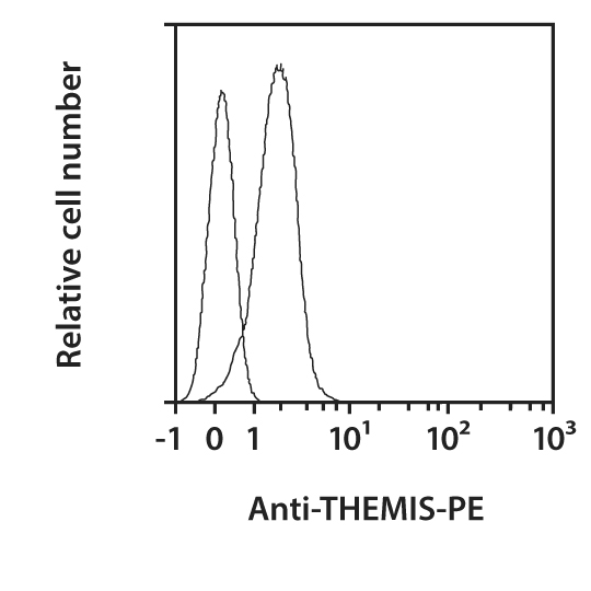 THEMIS Antibody, anti-mouse, REAfinity™