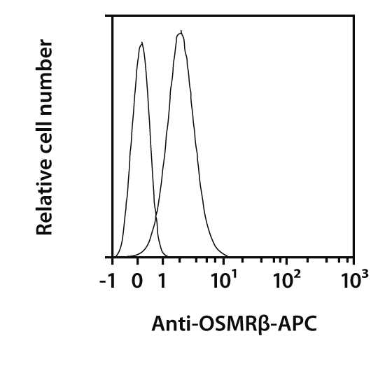 OSMRβ Antibody, anti-human, REAfinity™