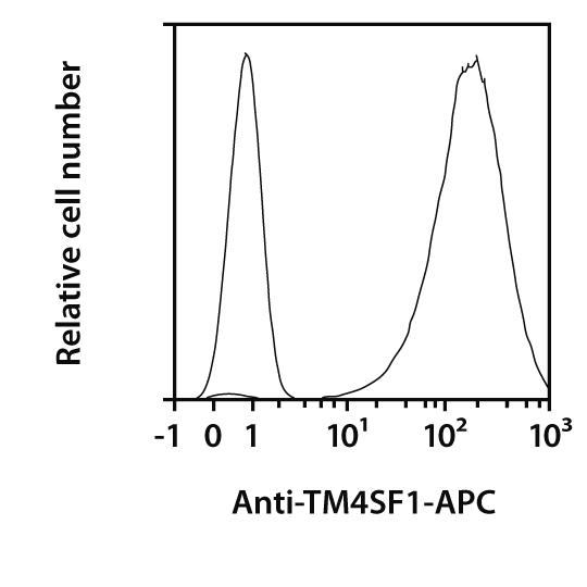 TM4SF1 Antibody, anti-human, REAfinity™