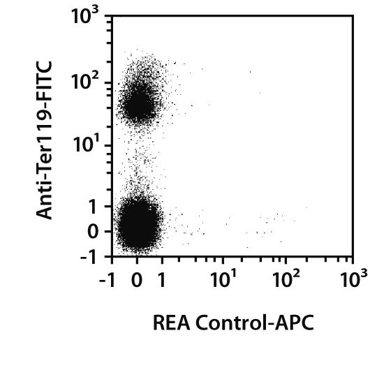 CD98 Antibody, anti-mouse, REAfinity™