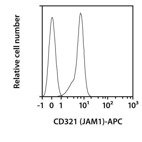 CD321 (JAM1) Antibody, anti-mouse, REAfinity™