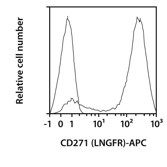 CD271 (LNGFR) Antibody, anti-human, REAfinity™