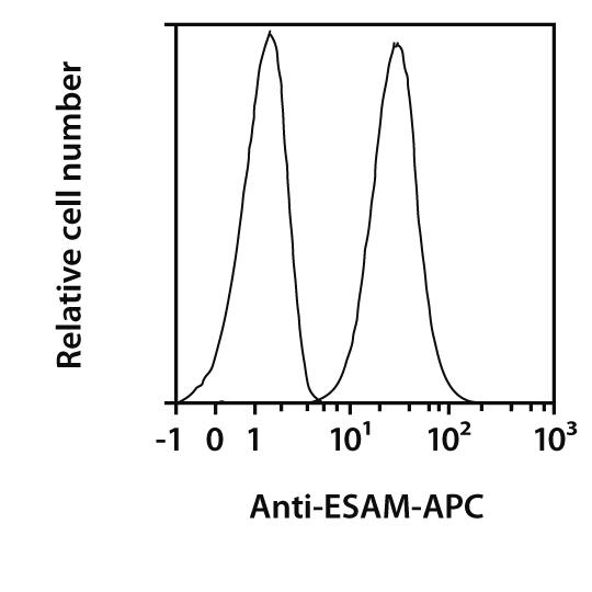 ESAM Antibody, anti-human, REAfinity™