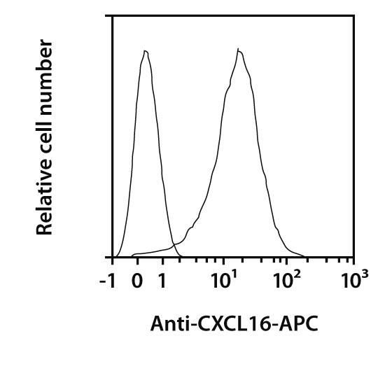 CXCL16 Antibody, anti-human, REAfinity™