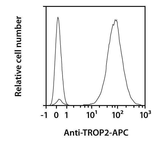 TROP2 Antibody, anti-human, REAfinity™