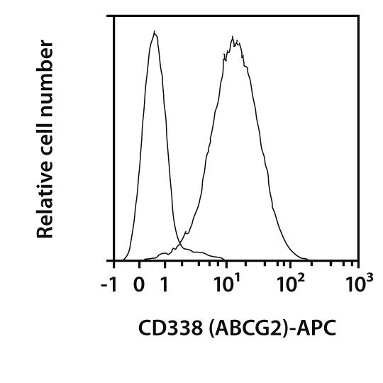 CD338 (ABCG2) Antibody, anti-human, REAfinity™