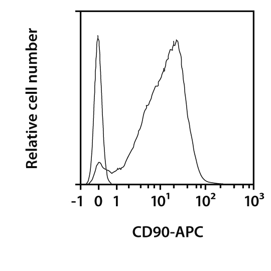 CD90 Antibody, anti-human, REAfinity™