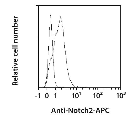 Notch2 Antibody, anti-human