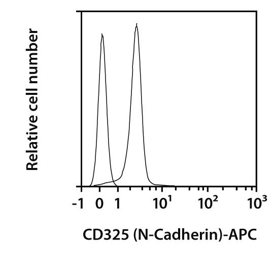 CD325 (N-Cadherin) Antibody, anti-human/mouse