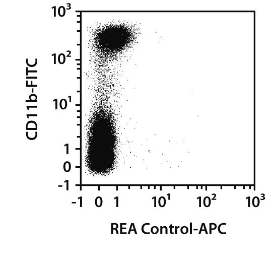iNOS Antibody, anti-mouse, REAfinity™