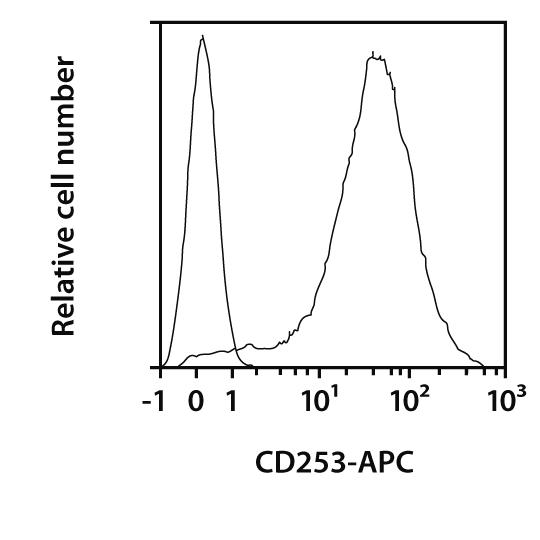 CD253 Antibody, anti-mouse, REAfinity™