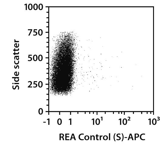Jagged2 Antibody, anti-human, REAfinity™
