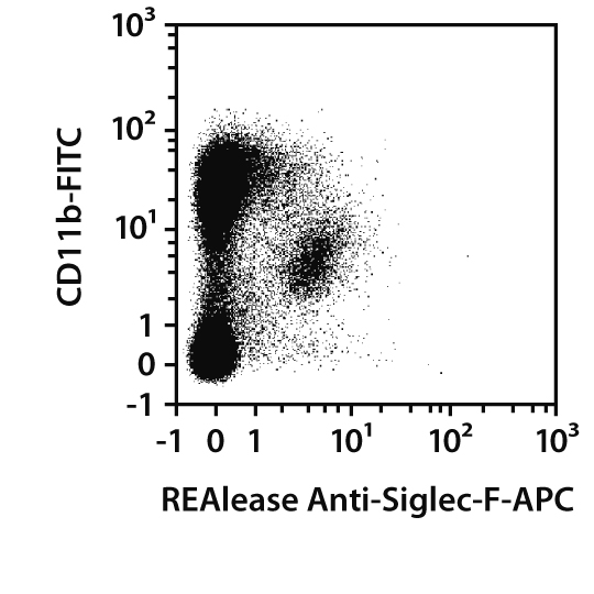 Siglec-F Antibody, anti-mouse, REAlease®