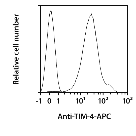 TIM-4 Antibody, anti-mouse, REAfinity™