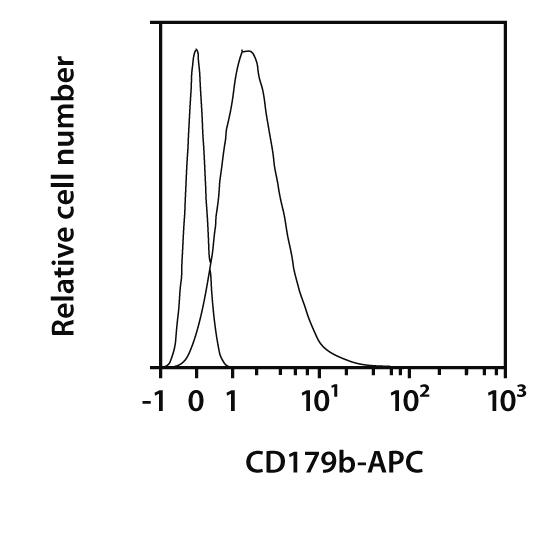 CD179b Antibody, anti-human, REAfinity™