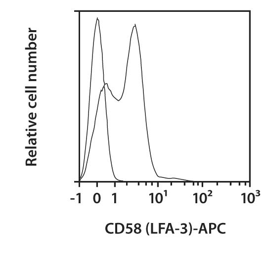 CD58 (LFA-3) Antibody, anti-human, REAfinity™
