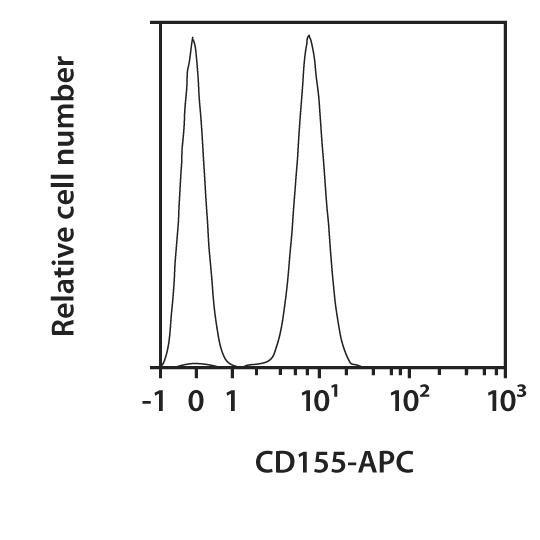 CD155 Antibody, anti-human, REAfinity™