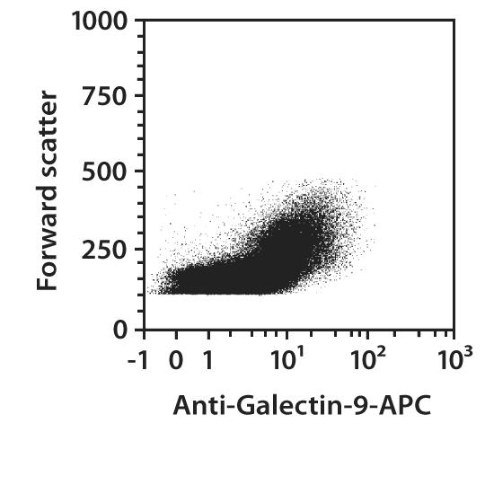 Galectin-9 Antibody, anti-mouse, REAfinity™