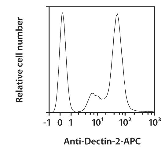 Dectin-2 Antibody, anti-mouse, REAfinity™