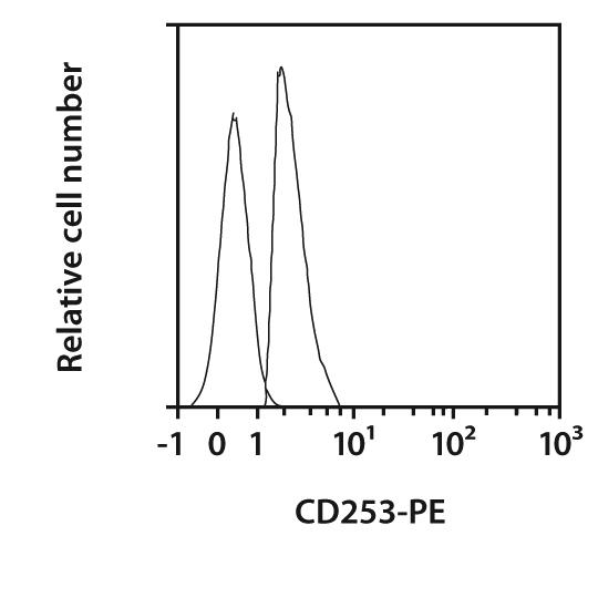 CD253 Antibody, anti-human, REAfinity™