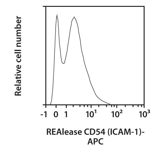 CD54 (ICAM-1) Antibody, anti-mouse, REAlease®