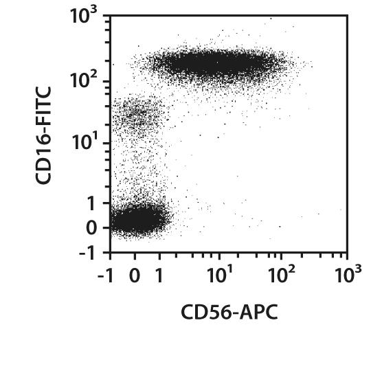 CD65 Antibody, anti-human, REAfinity™
