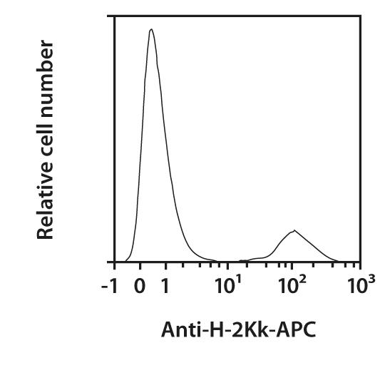 H-2Kk Antibody, anti-mouse, REAfinity™