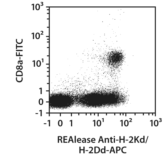 H-2Kd/H-2Dd Antibody, anti-mouse, REAlease®
