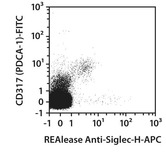 Siglec-H Antibody, anti-mouse, REAlease®