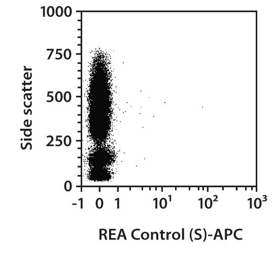 CD99 Antibody, anti-human, REAfinity™