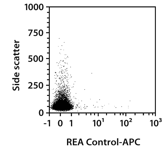 CD45.1 Antibody, anti-mouse, REAfinity™