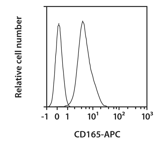 CD165 Antibody, anti-human, REAfinity™