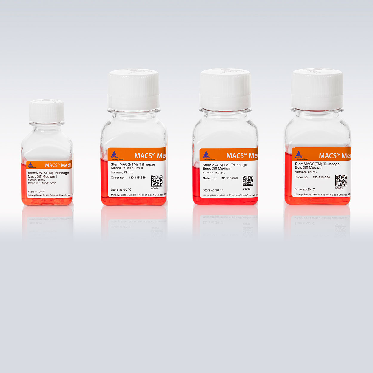 StemMACS™ Trilineage Differentiation Kit, human