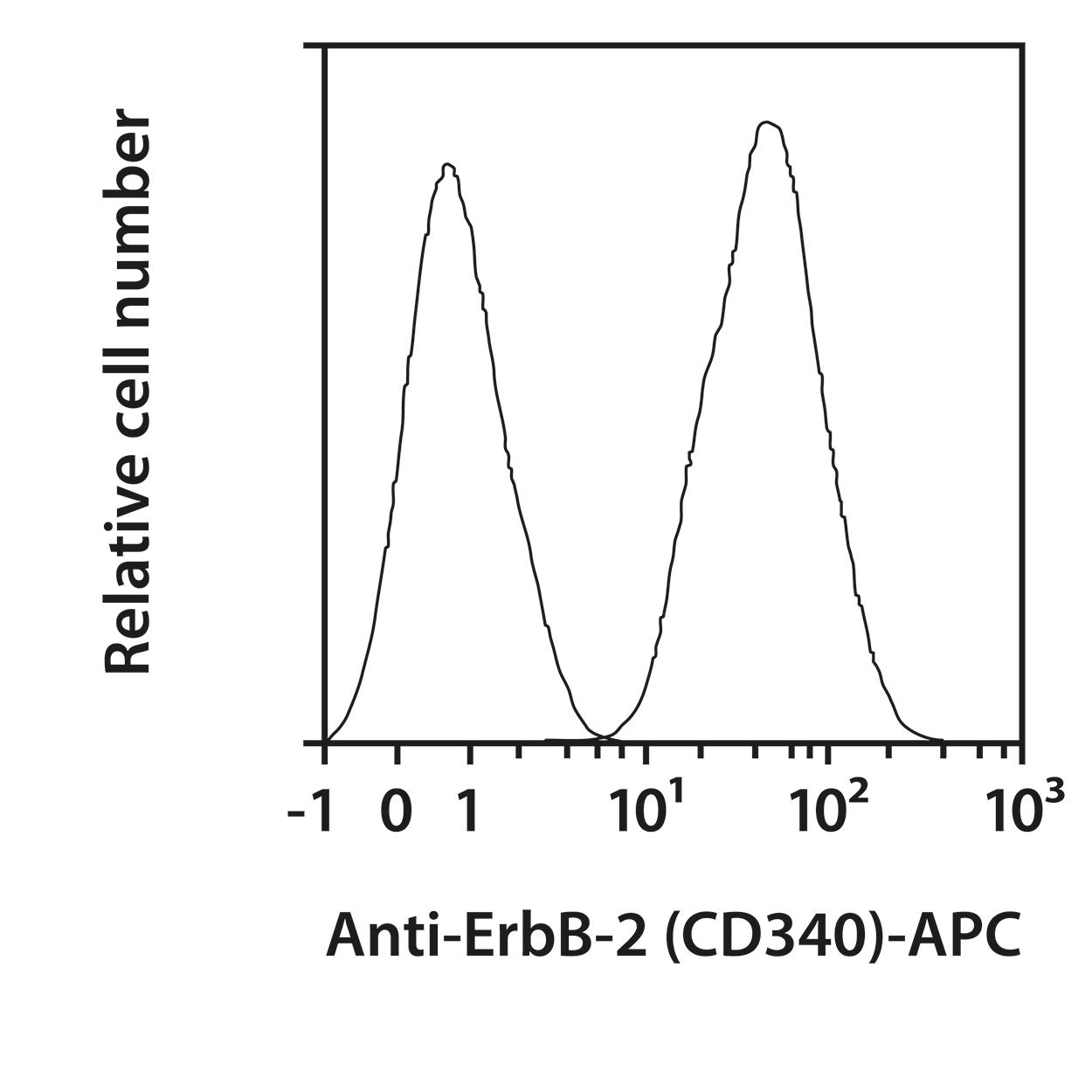 ErbB-2 (CD340) Antibody, anti-human, REAfinity™