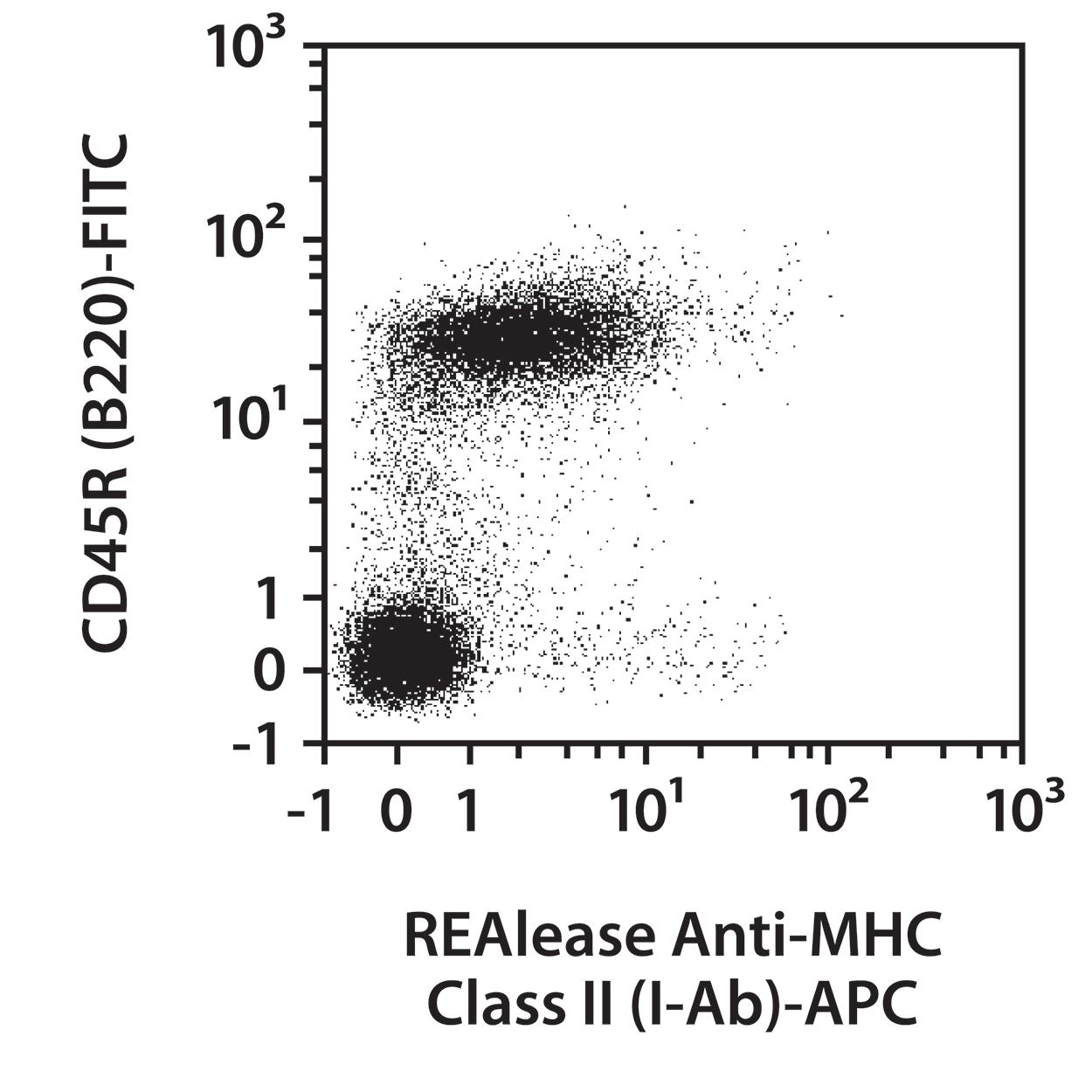 MHC Class II (I-Ab) Antibody, anti-mouse, REAlease®